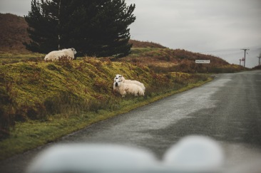 Drive Classics Rally - London to Wales 2019 (170 of 177)
